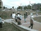 初夏のクリーン運動を開催しました。 6