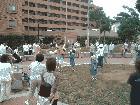 初夏のクリーン運動を開催しました。 9